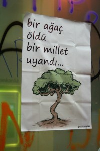 E' morto un albero si è svegliato un paese
