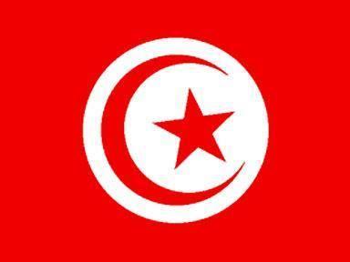 """Rivoluzione: le alterne vicende del """"modello tunisino"""""""