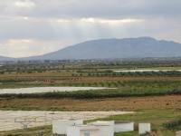 Forum Tunisien pour la Souveraineté Alimentaire (Premier texte)